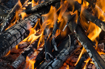 Picnic fire
