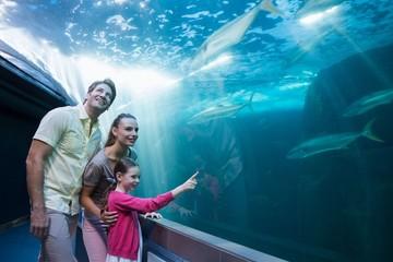 Happy family looking at tank