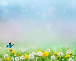 Spring nature background with dandelion fields