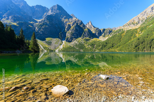 Pieniny, Kluszkowce, Tatra Mountains, Poland  № 8231 без смс