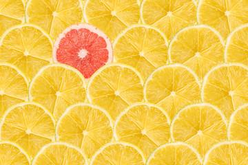 Obraz One Pink Grapefruit Slice Stand Out Of Yellow Lemon Slices - fototapety do salonu