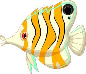 cute cartoon angel fish
