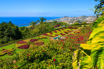 Monte tropical gardens in Funchal town, Madeira island, Portugal Fototapete