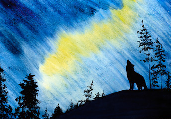 Northern Lights and the Wolf