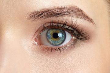 Macro image of beautiful woman eye