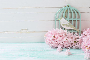 Postcard with fresh flowers hyacynths