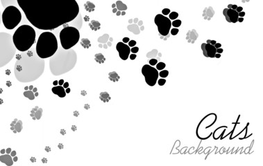 Cats paw background with sample text