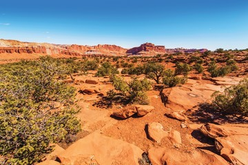 Wall Mural - Capitol Reef Rocky Landscape
