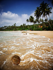 Summertime at Tropical Beach