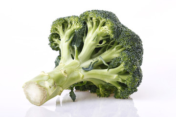 Broccoli vegetable on white