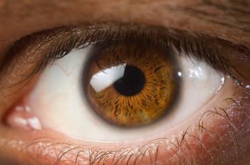 Deurstickers Iris brown eye