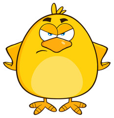 Angry Yellow Chick Cartoon Character