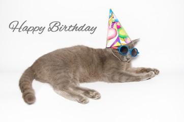 Cartolina d'auguri di buon compleanno