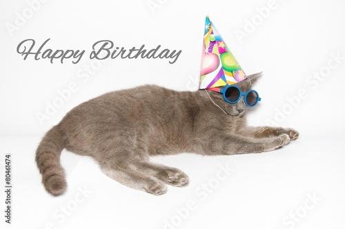 Cartolina Dauguri Di Buon Compleanno Immagini E Fotografie Royalty