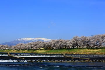 青空と蔵王 人目千本桜