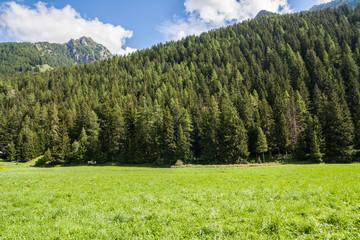 Val d'Ayas, Alpi, Valle d'Aosta, Italia