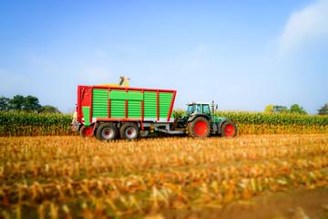 Fototapete - Maisernte, Traktor mit Anhänger  auf dem Feld