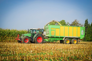 Wall Mural - Erntewagen mit Traktor bei der Maisernte