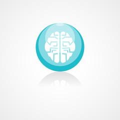 Brain web icon
