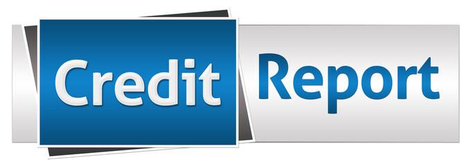 Credit Report Blue Grey Horizontal