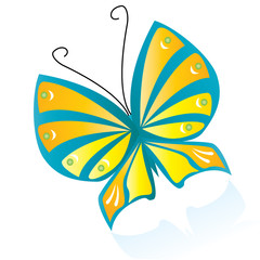 Stylized Color-full butterfly, vector illustration
