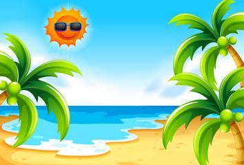 Beach under the sun