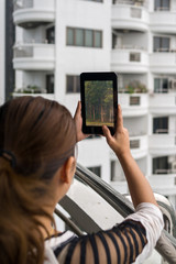 Woman holding tablet in her hands with forest view on the screen
