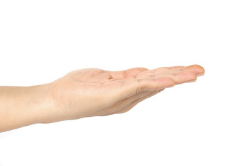 hand lady on a white background.