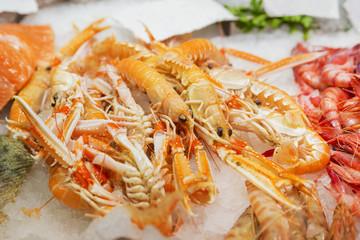 Seafood variety on fish market