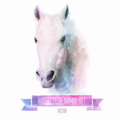 Vector set of watercolor illustrations. Cute horse