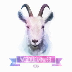 Vector set of watercolor illustrations. Cute goat