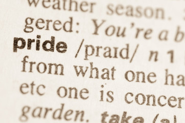 Dictionary definition of word pride