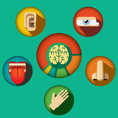 Five senses concept with human organs icons