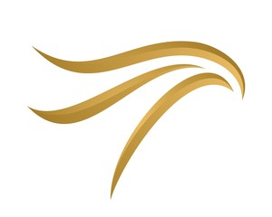 gold eagle head