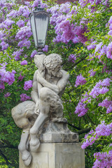 Faun Statue, background of blooming lilacs,Lazienki in Warsaw