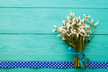 Snowdrops and polka dots ribbon on wooden background