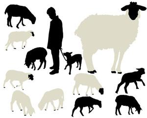 sheep vector silhouettes