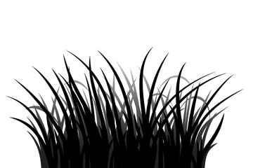Wall Mural - Grass silhouette on white background, vector illustration