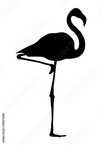 Flamingo silhouette stock image and royalty free vector files on flamingo silhouette pronofoot35fo Images