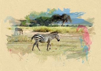 Zebra on textured paper. Brush effect