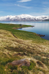 Iceland landspace with fjord and mountain