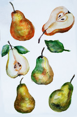 pears watercolor