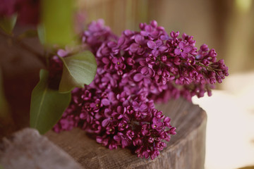 a bouquet of lilac , lilac flowers on wooden bacground - May