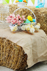 chicks near a basket