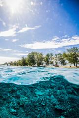 beautiful underwater indonesia scuba diving diver lombok bali