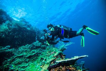 diver photo video seafan kapoposang indonesia scuba diving