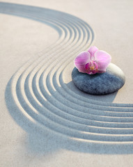 Wall Mural - Orchidee auf Stein im Sand 1