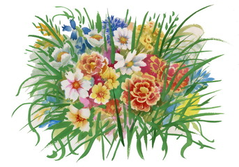 Colorful spring wildflowers illustration