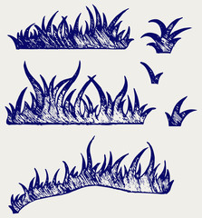 Silhouette grass. Doodle style