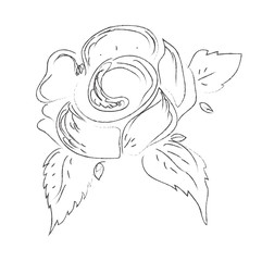 flower, hand, drawings, sketch, decorative, vector, illustration